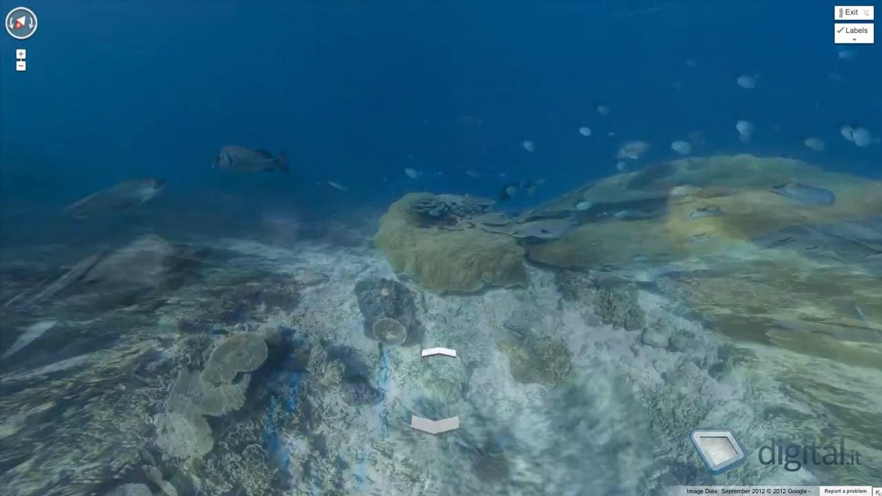 google-street-view-immagini-sottomarine-10