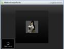 Skype 4.0 Videochiamata