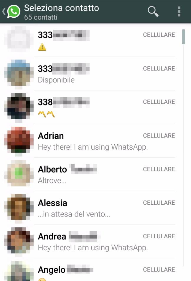 WhatsApp Chiamate: l'elenco dei contatti (Android)