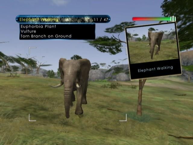 Wild Earth: African Safari - Screenshots