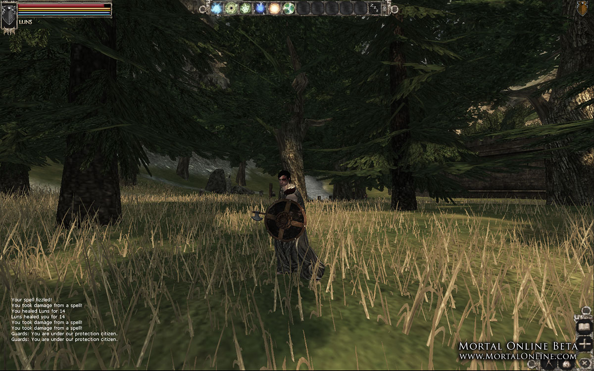 Mortal Online - Ingame