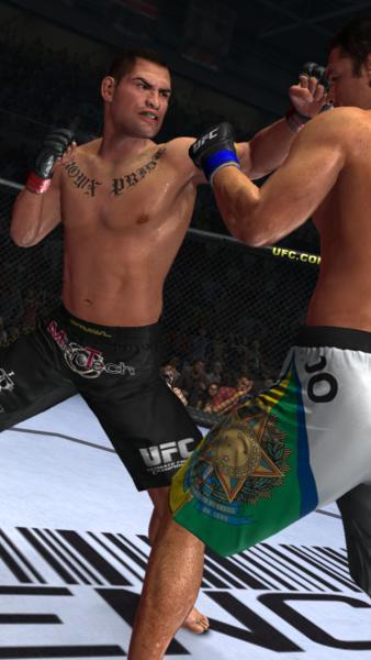 UFC 2010 Undisputed - Lotta a terra!