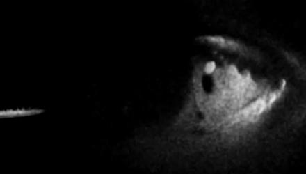 VGA 2010: Guillermo Del Toro al lavoro su InSANE