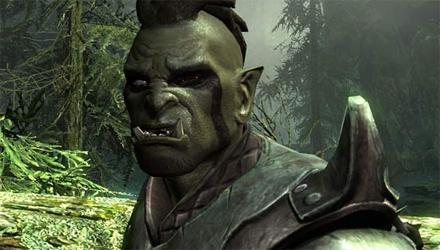 Skyrim: prima patch ufficiale, con qualche polemica