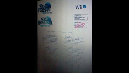 Super Smash Bros. Universe in arrivo su Wii U e 3DS?