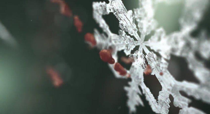 #PlayStationGC: un trailer anticipa Until Dawn alla Gamescom?
