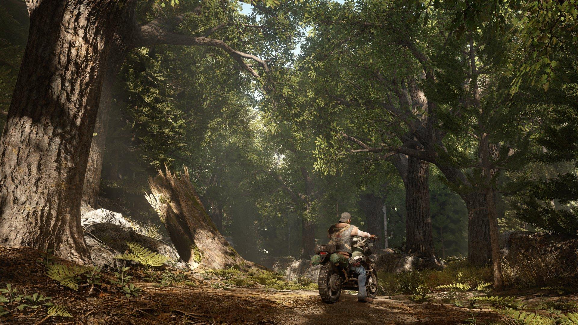 Days Gone: tris di scatti dalla versione PS4 Pro