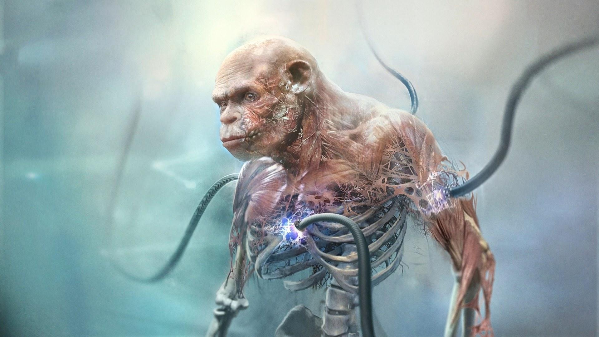 Beyond Good and Evil 2: immagini e video dai mondi alieni del Sistema 3
